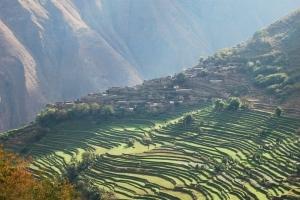 Tarasy ryżowe w Yunnan, Chiny